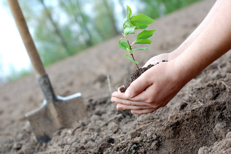 Corporate Social Responsibility Has Evolved Beyond the Concept of Philanthropy